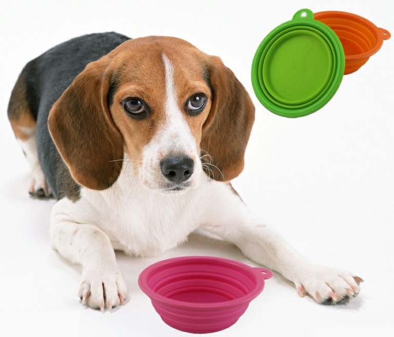 Silicone Pet Expandable Collapsible Travel Bowl
